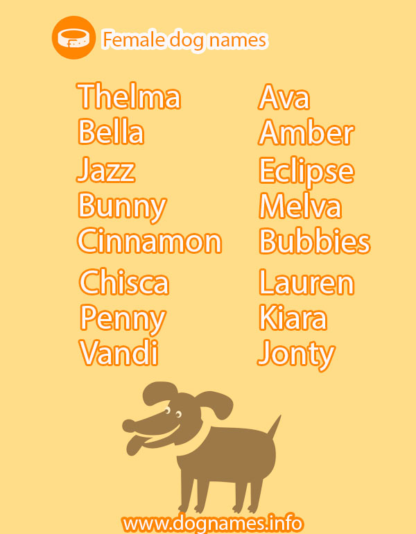 Good Names For Females Dogs