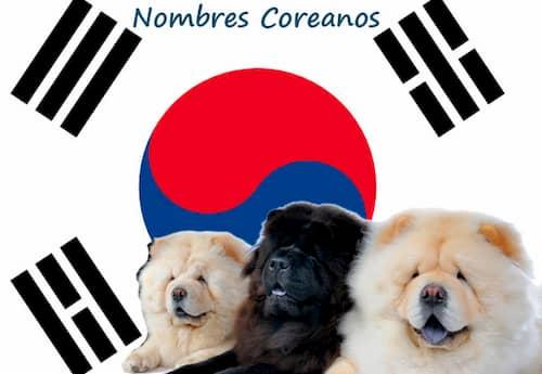 Best korean dog names